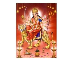 love marriage vasikaran specialist 09815023165